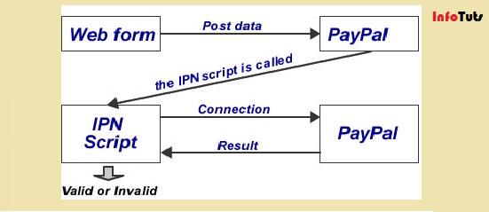 paypal-ipn-detail